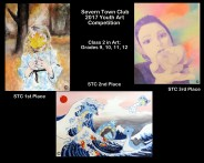 Collage Art-2 Winners