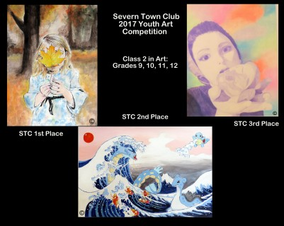 Collage Art-2 Winners