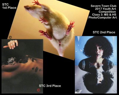Collage Art-3 Winners